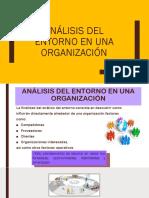 analisis del entorno en una org