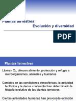 Plantas terrestres-Evolución y diversidad