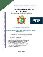 69376141-Metabolismo-de-Los-Carbohidratos-en-El-Deportista.doc