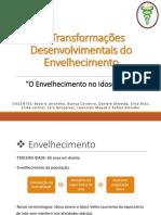 Envelhecimento - Apresentação.pdf