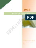 Curso Bases Febrero 2015[3266]