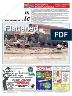 Platinum Gazette 01 February 2019
