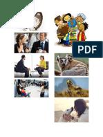 Comunicacion humana y animal.docx