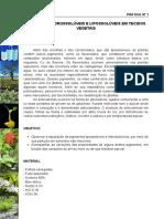 Final - Prática 1- Pigmentos hidrossoluveis