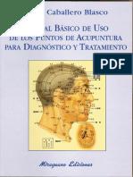 Laserneedle-Acupuncture (Gerhard Litscher, Detlef Schikora)