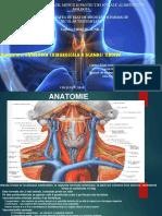 glanda tiroida chirurgie