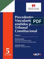 Precedentes Vinculantes Emitidos Por El Tribunal Constitucional. Tomo I
