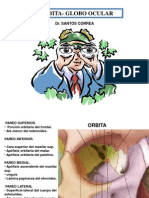 Clase 6 - Fosa Orbitaria