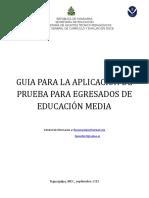 Guia de Aplicacion 2015 (1)