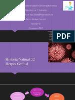 HERPES (1).pptx