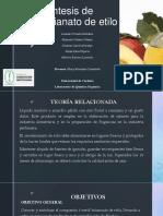 Seminario Ester.pptx