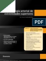 Patología Arterial de Extremidades Superiores