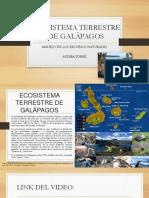 Ecosistema Terrestre de Galápagos