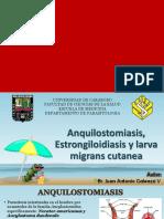 Anquilostomiasis, Estrongiloidiasis y Larva Migrans Cutanea