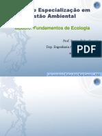 aula_1_ecologia-gestao.ppt