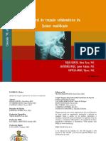 Manual de Steiner