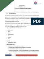 HOJA GUIA  PRACTICA nº 12.docx