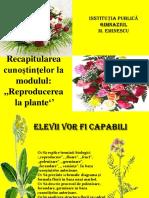 Reproducerea La Plante 1