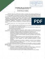 6. Raport Activitate Dumitrar V.