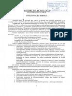 11.Raport Activitate Strutinschi R.
