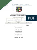 Info.8 Conductimetria