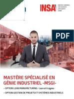 msgi.pdf