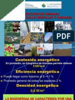 Simposio Bioeconomia 2013 5 Hilbert