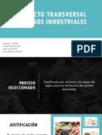 Proyecto Transversal Procesos Industriales