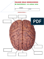 2°prova_STUDENTI (tavole anatomicheI)