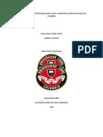 INFLUENCIA DE LA CONSTITUCION NACIONAL EN LOS CONTRATOS DE DERECHO PRIVADO EN COLOMBIA.docx