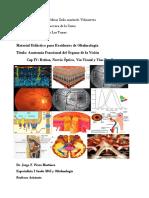 4. Anatomía Funcional de Retina, Nervio Óptico, Vía Visual y Vías Pupilares