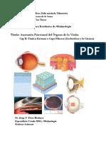 2. Anatomia Esclerotica y Cornea