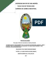 PG-2004-Marquez Mamani, Félix Obispo