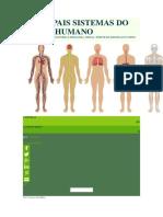 Principais Sistemas Do Corpo Humano