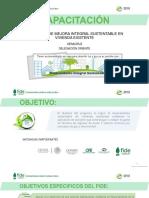 CAPACITACIÓN PMIS.pdf