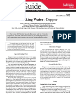 Nebraska Copper in Water , secured