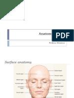 Anatomi Wajah Untuk Filler 220815