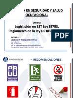 Ley 29783 (1)