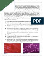 Case Studies in Bacteriology Legaspi Kim