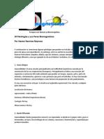 20 Patologías y Sus Pares Biomagneticos