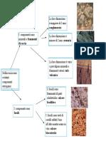 Sediment Arie