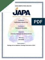 Tarea 1 Anatomía y Fisiología Del Sistema Nervioso