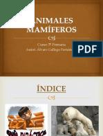 ANIMALES MAMÍFEROS.pptx