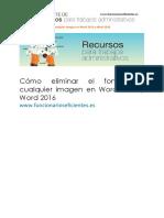 Como Eliminar El Fondo de Cualquier Imagen en Word 2013 y Word 2016 Tutorial.original