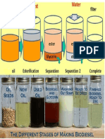 Biodiesel Etapes