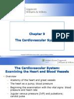 The Cardio Vascular