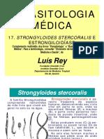 REY - Parasitologia - 17.pdf