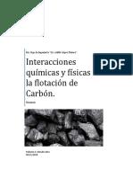 Interacciones Fisicas y Quimicas en La Flotacion Del Carbon