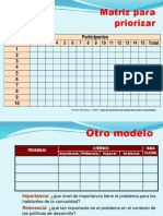 Matrices Priorización