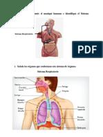biologia general.docx